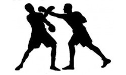 Boks i MMA